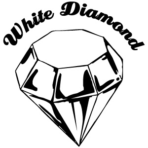 Roberts Surfboards White Diamond Logo
